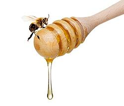 honey-to-a-bee_350x300.jpg